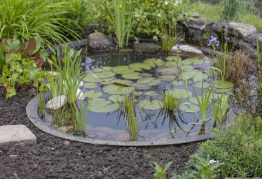 bassin d'ornement jardin